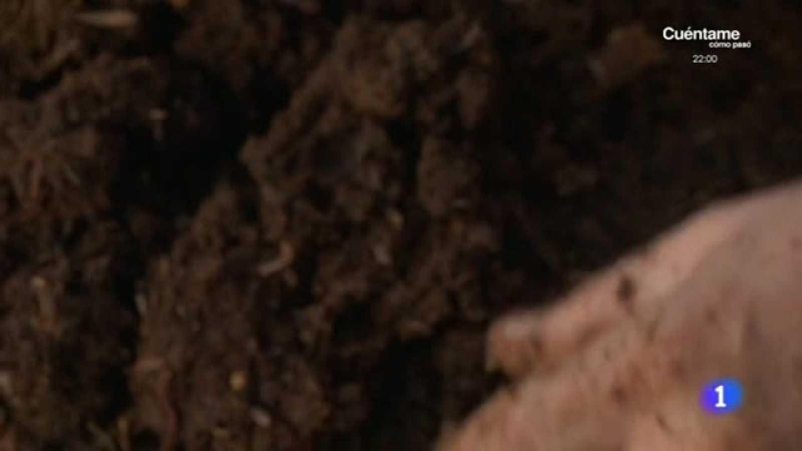 Lombrices fertilizantes todoterreno