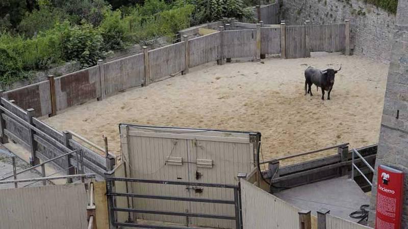 Uno de los toros del encierro ha regresado a los corrales