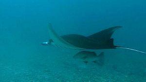 Yap en la Micronesia