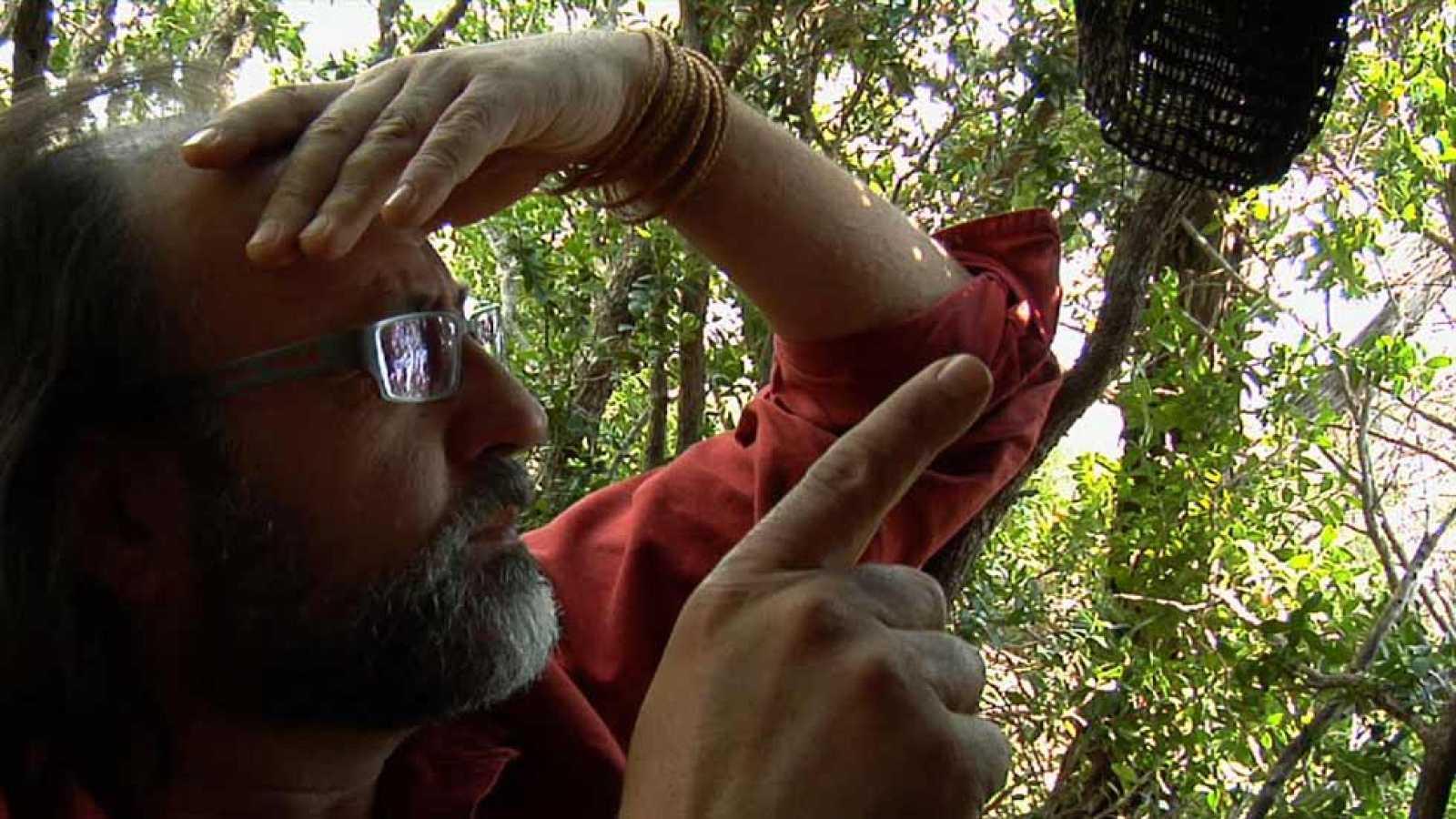 De aventura naturalista con Luismi Domínguez