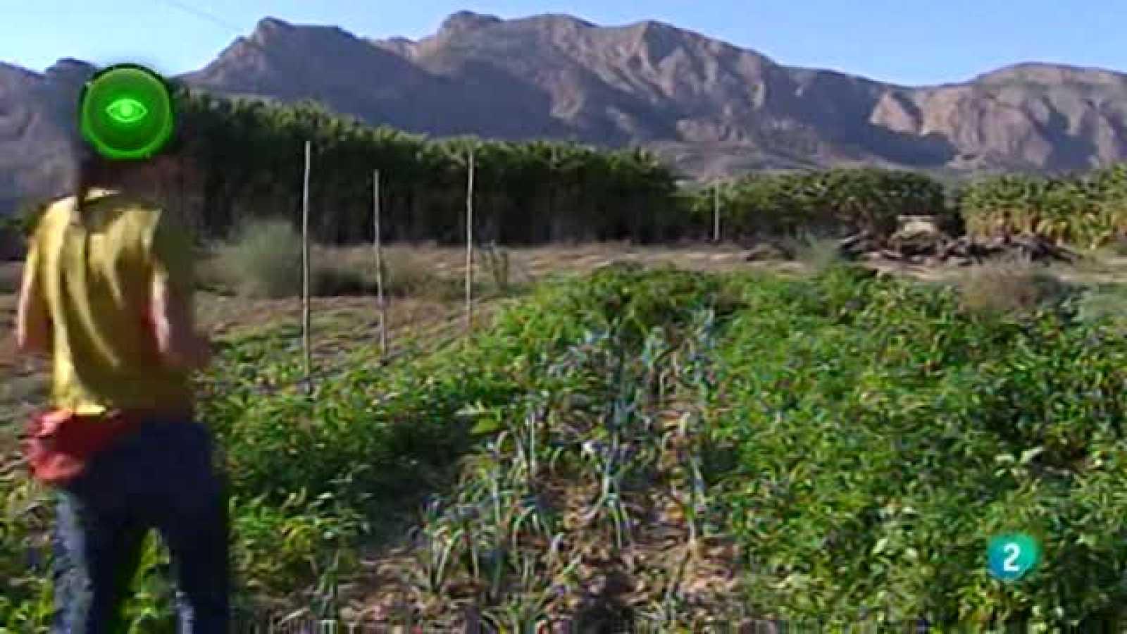 Agrosfera - En primer plano - Premios Innovación para mujeres rurales