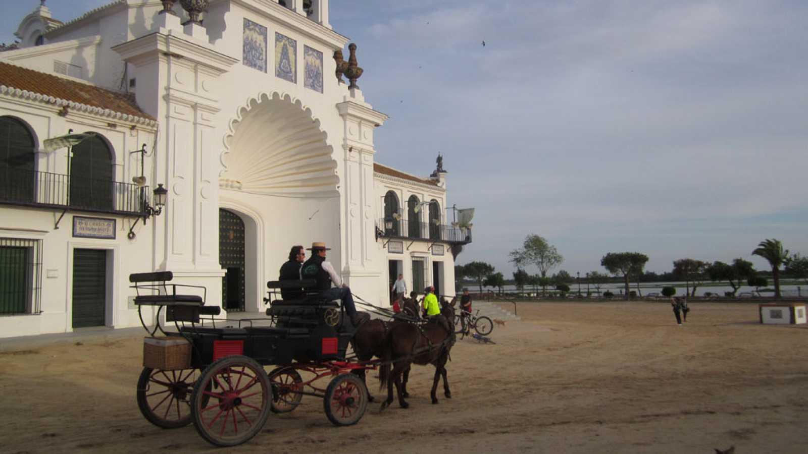 80 cm - Edu Soto en el parque Nacional de Doñana - avance