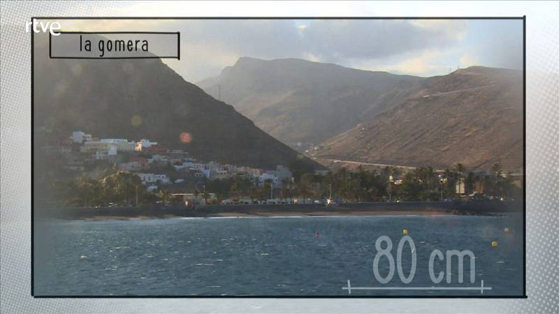 80 cm - La Gomera - Avance