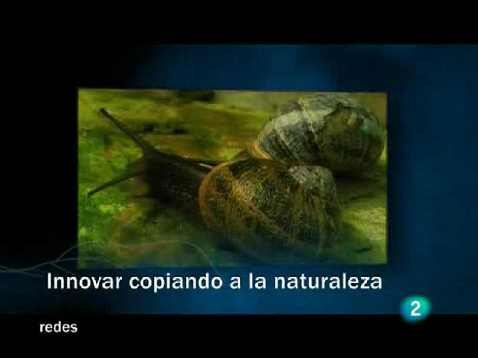 Redes (09/11/08) : Innovar copiando a la Naturaleza