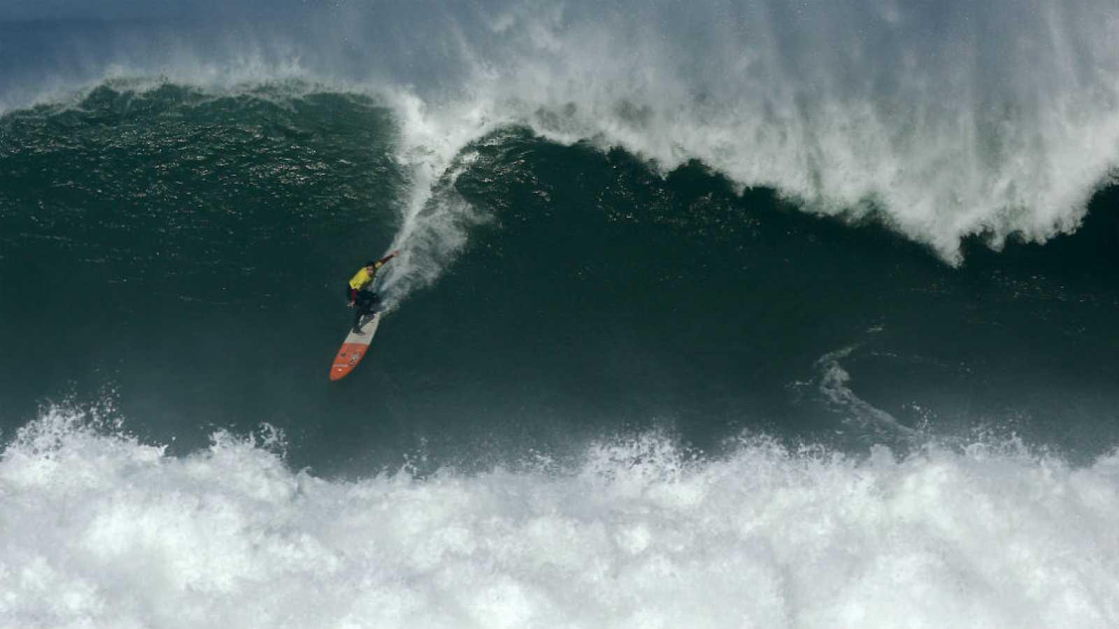 Surf - 'La vaca gigante', 2015