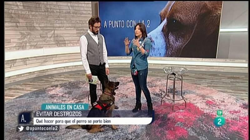 A punto con La 2 - Animales en casa con Nuria Sorribes