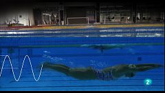 animalades -  Mar - Mireia Belmonte ens ensenya a nadar com un dofí