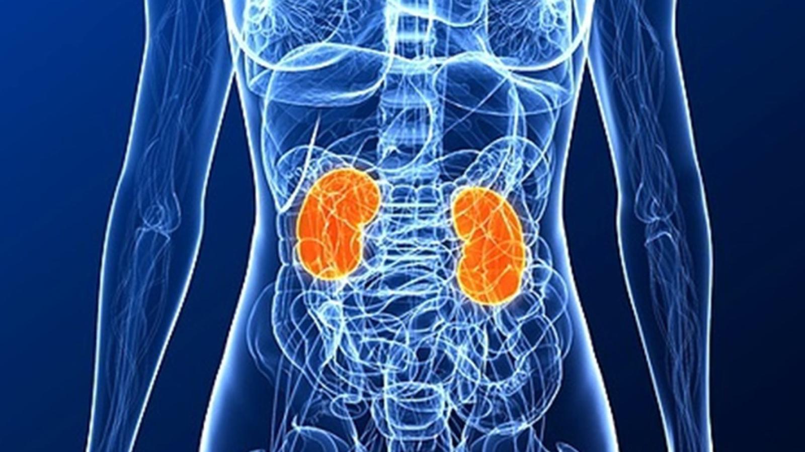 Saber Vivir - Cuida tus riñones