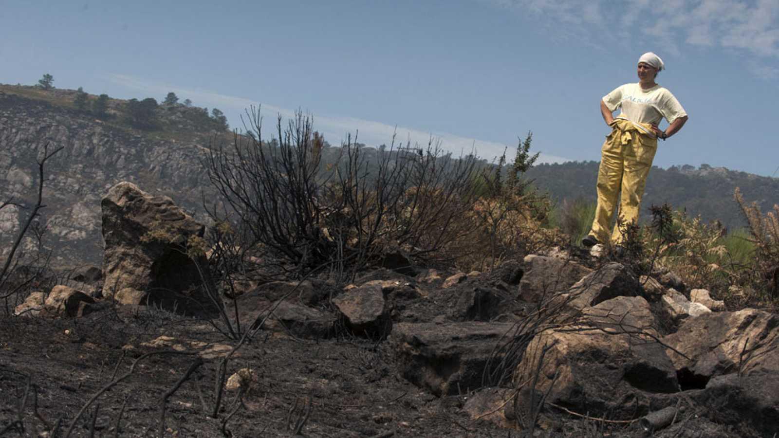 El fuego concede una tregua a Galicia aunque sigue la lucha contra un incendio en Lalín, en Pontevedra