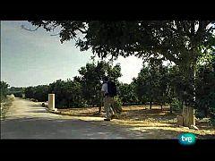 Nuestros caminos a Santiago -  Camino de levante 1