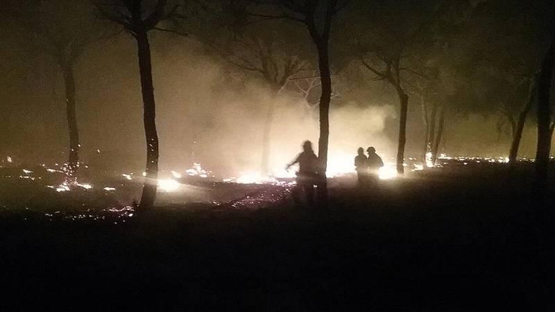 Un incendio forestal en Moguer (Huelva) obliga a desalojar a más de dos mil personas