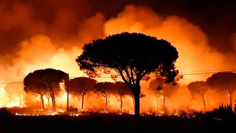 Incendio en Moguer - Un incendio forestal obliga a desalojar a más de dos mil personas en el entorno de Doñana