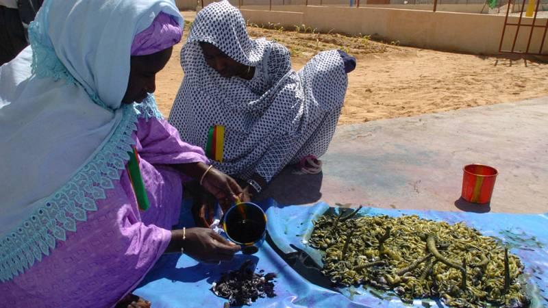 En Mauritania, la sequía que afecta al Sahel desde hace cinco años está causando una crisis alimentarIa que afecta a casi medio millon de personas.