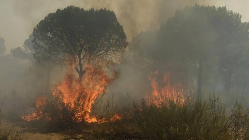 Unas 400 personas han sido desalojadas de forma preventiva como consecuencia del incendio que se ha declarado esta tarde en el término municipal de Minas de Riotinto, en Huelva, según ha informado el servicio de emergencias 112.Unos 250 vecinos de la