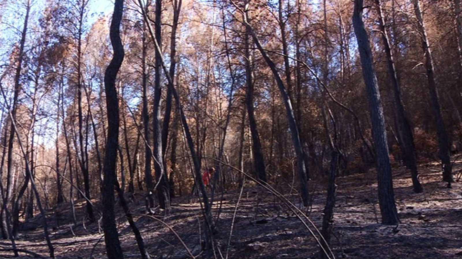 Tras un incendio extinguido, ¿qué puede ocurrir?