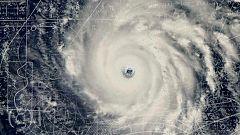 Documenta2 - En el ojo del huracán: Predecir lo impredecible