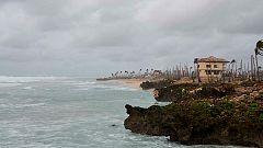 Documenta2 - En el ojo del huracán: Configurando la naturaleza
