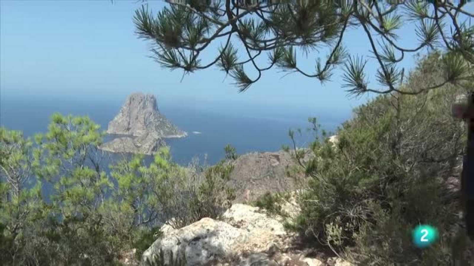 80 cm en Ibiza - Avance