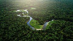 Grandes documentales - El Amazonas de Oriente: La fuente de la vida