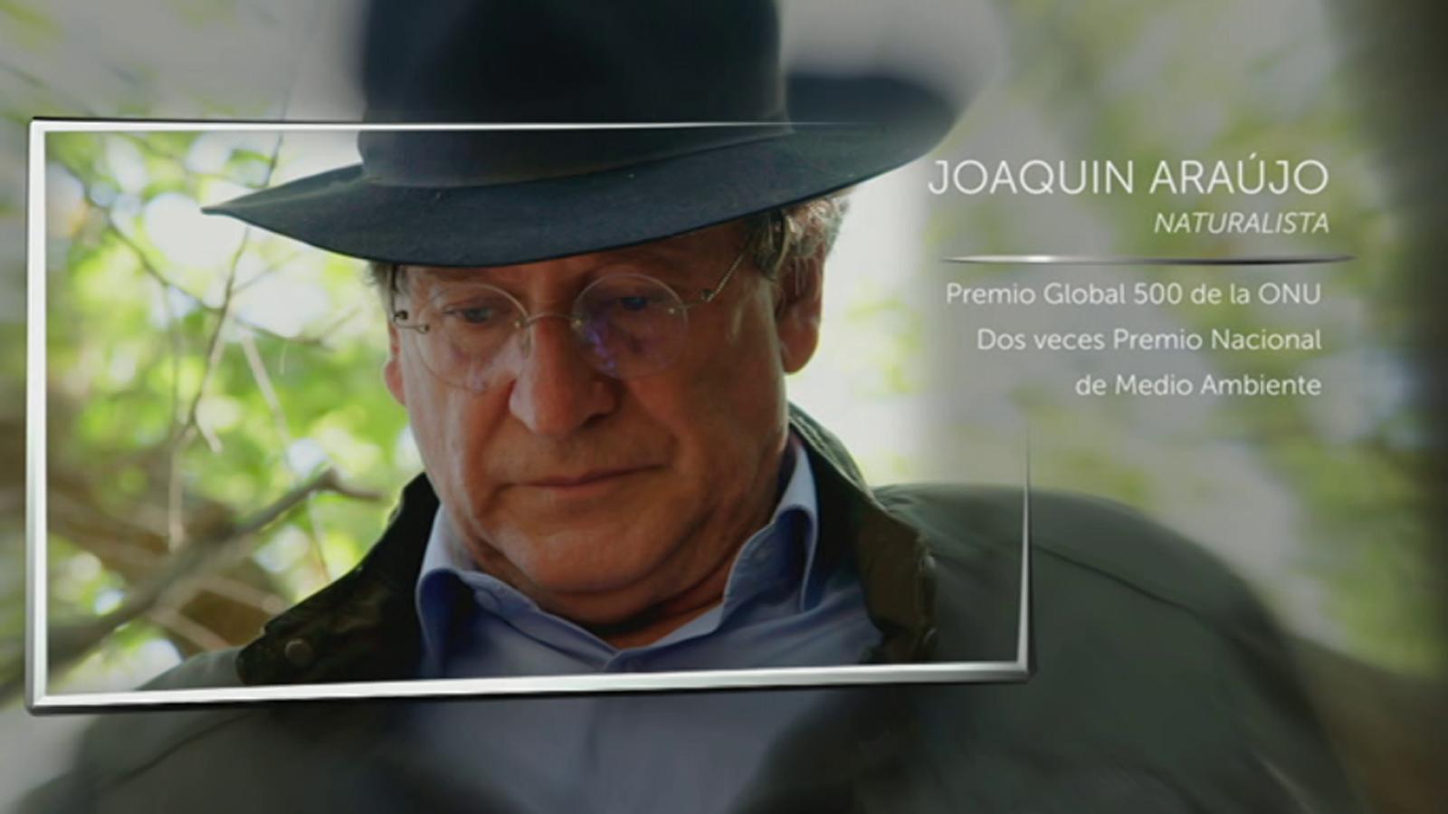 El señor de los bosques - Joaquín Araújo - ver ahora