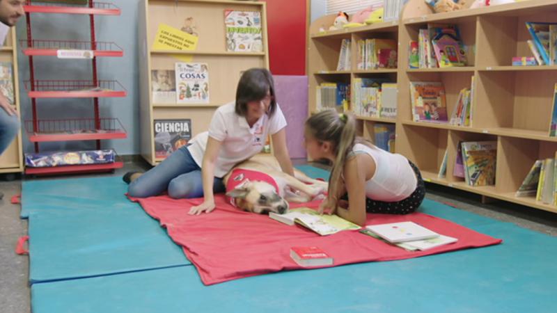 Maneras de educar - Colegio La Paz, Albacete - ver ahora