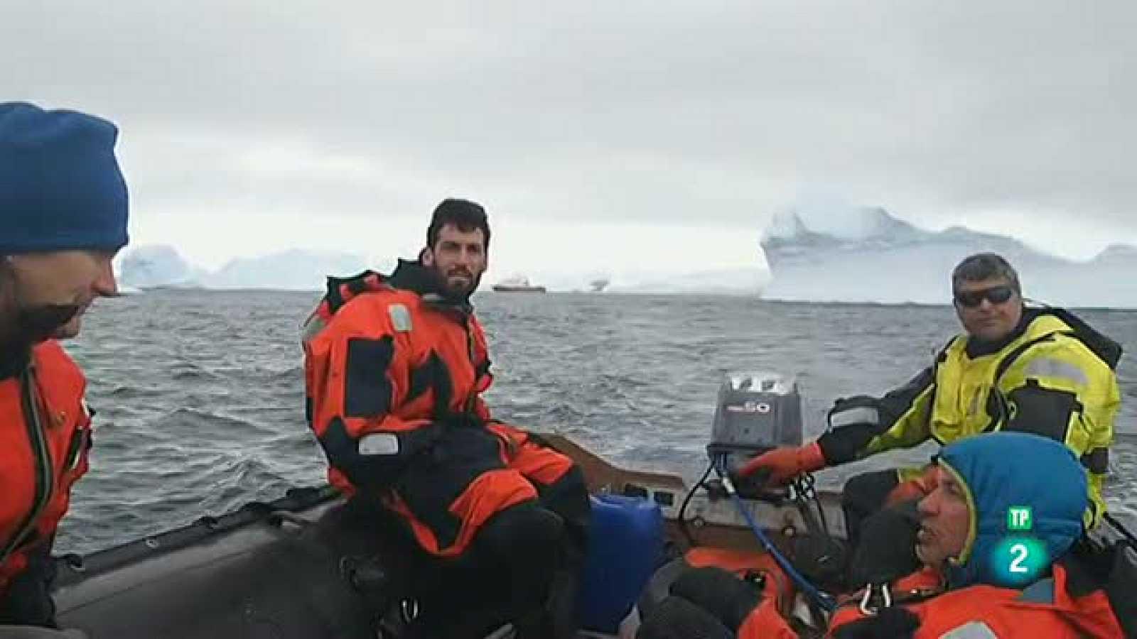 La Aventura del Saber. Volverás a La Antártida Hilo Moreno fotografía Paco Gómez