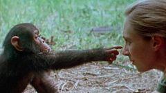 El documental - Grandes momentos de la evolución: el milagro de la vida