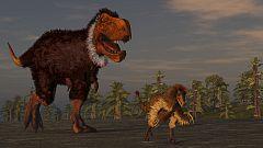 Documaster - Grandes momentos de la evolución: secretos de la supervivencia