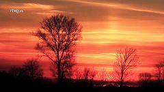 Palabra Voyeur - Poesía completa. Robert Frost - 07/03/18
