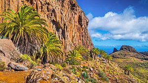 Las Islas Canarias: La vida en el límite