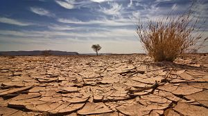 Territorios del monzón: la sequía