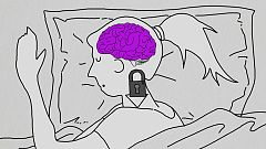 La noche temática - El cerebro dormido. La ciencia de los sueños