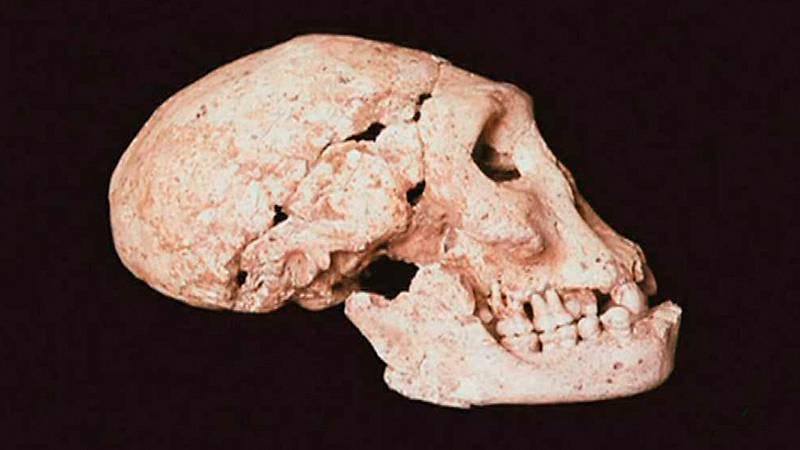 Documaster - La España prehistórica. Primera parte - ver ahora