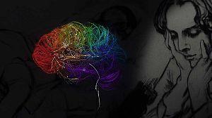 El cerebro bipolar