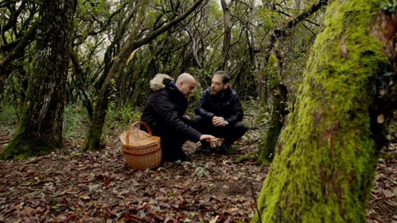 El señor de los bosques - Sierra de Francia - ver ahora