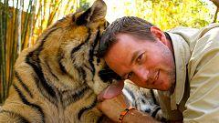 Otros documentales - Tigres en casa. Episodio 2