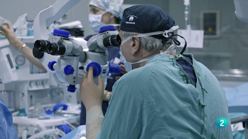 La Ciencia de la Salud - Cuidar tu vista