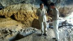 Arqueomanía - Dossier 4