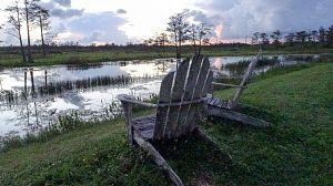 Mississippi salvaje: El Blues del Delta