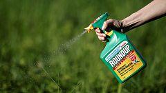 Monsanto, condenada a pagar 289 millones de dólares por los efectos cancerígenos del polémico herbicida glifosato