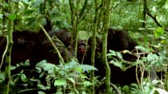 Otros documentales - Extrañas maravillas del mundo. Serie 2. Episodio 2