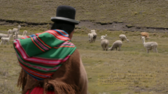 Comerse el mundo - Bolivia