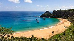 Grandes documentales - Brasil. Una historia natural: La costa paradisiaca