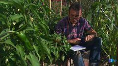 Aquí la tierra - Examen para pimienteros
