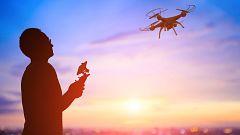 Drones para luchar contra la avispa asiática