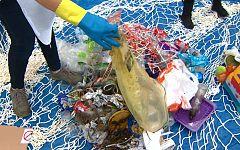 Repor - Plastificados
