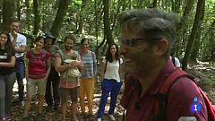 Comando actualidad - Patrimonio de la humanidad - Los acebiños de Garajonay