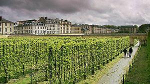 Los jardines franceses de Monty Don: El huerto gourmet