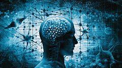 Documenta2 - El cerebro con David Eagleman: ¿Qué es la realidad?
