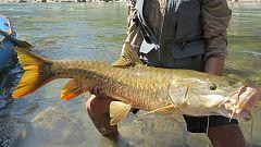 Otros documentales - Pesca Imposible 2: Nepal